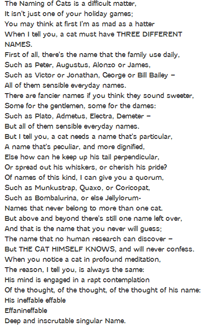 TSELIOT naming of cats